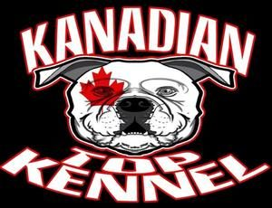 KanadianTopKennel